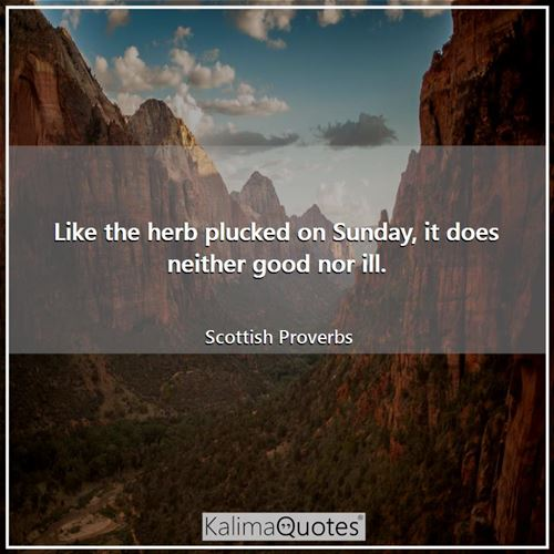 Like the herb plucked on Sunday, it does neither good nor ill. - Scottish Proverbs