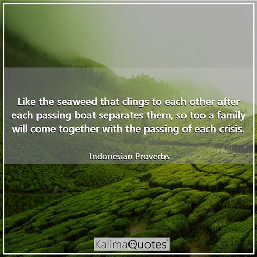 Like the seaweed that clings to each other after each passing boat separates them, so too a family will come together with the passing of each crisis.