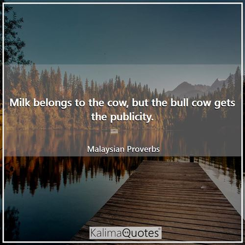 Milk belongs to the cow, but the bull cow gets the publicity.