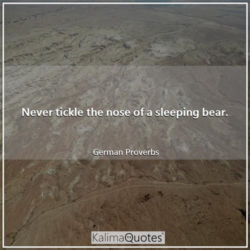 Never tickle the nose of a sleeping bear. - German Proverbs