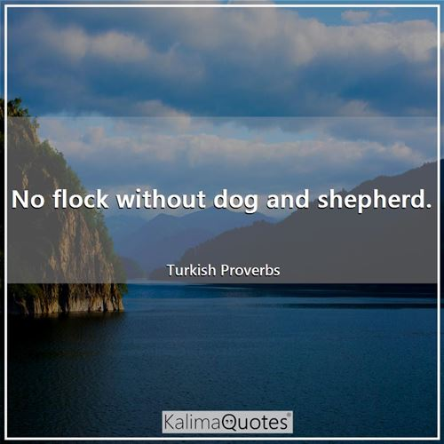 No flock without dog and shepherd.