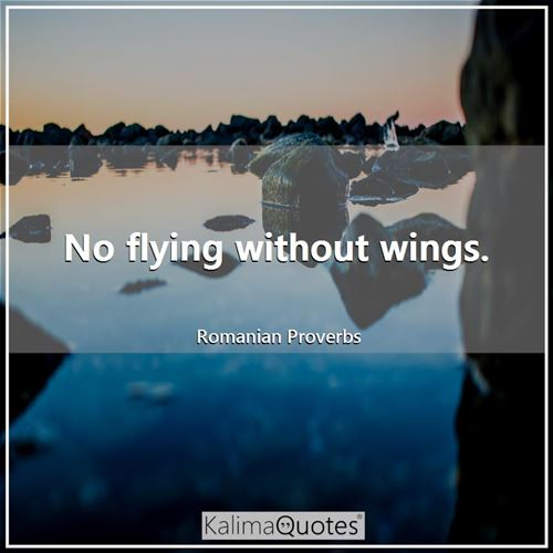 No flying without wings.
