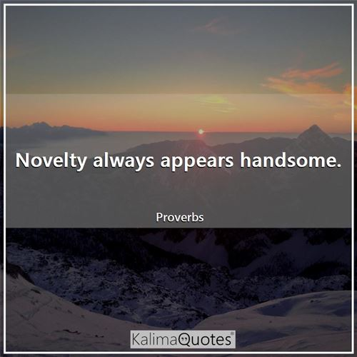 Novelty always appears handsome.