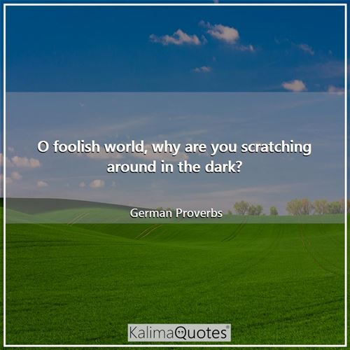 O foolish world, why are you scratching around in the dark? - German Proverbs