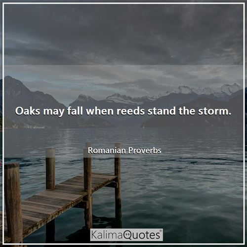 Oaks may fall when reeds stand the storm.
