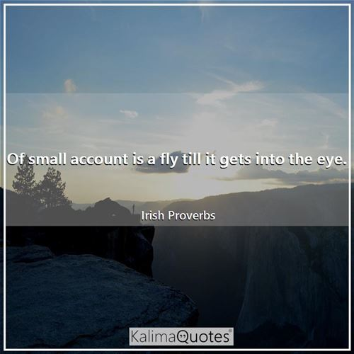 Of small account is a fly till it gets into the eye.