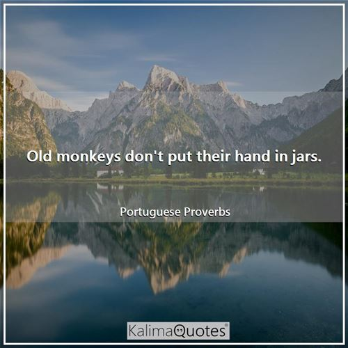 Old monkeys don't put their hand in jars. - Portuguese Proverbs
