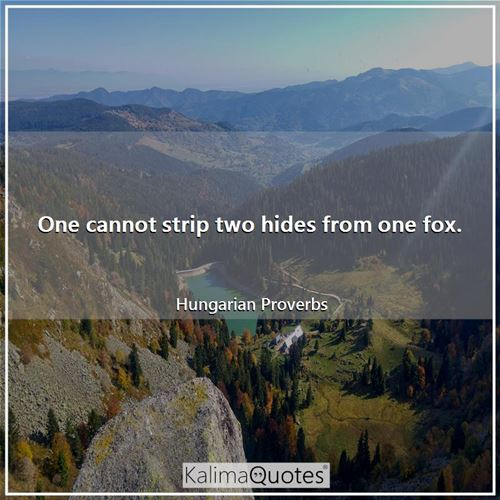 One cannot strip two hides from one fox. - Hungarian Proverbs