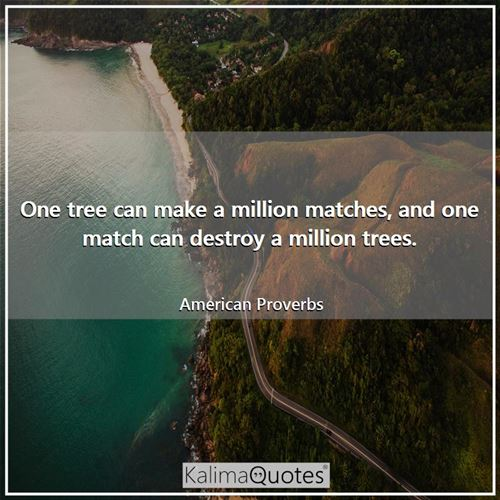 One tree can make a million matches, and one match can destroy a million trees. - American Proverbs