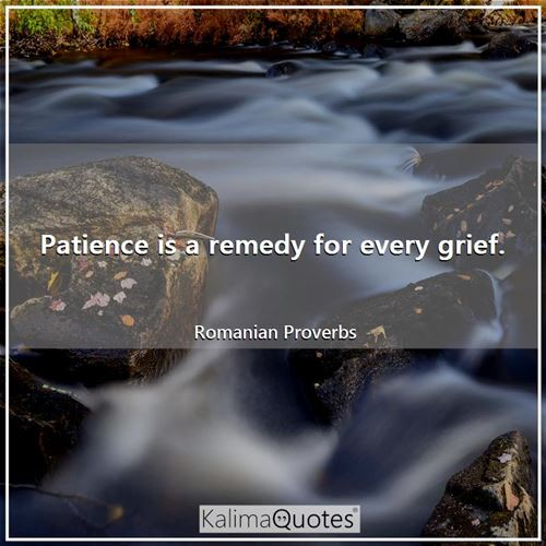 Patience is a remedy for every grief.
