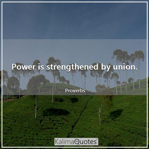 Power is strengthened by union.