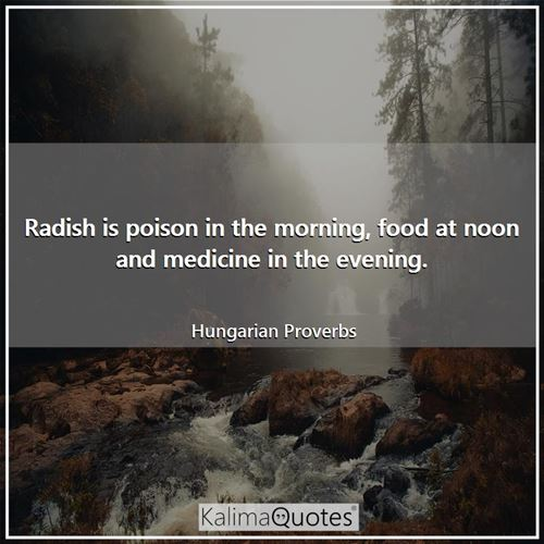 Radish is poison in the morning, food at noon and medicine in the evening.