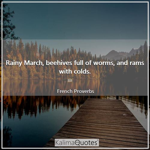 Rainy March, beehives full of worms, and rams with colds.