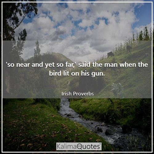 'so near and yet so far,' said the man when the bird lit on his gun.