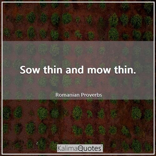 Sow thin and mow thin.