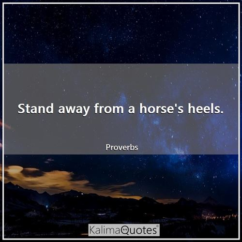 Stand away from a horse's heels.