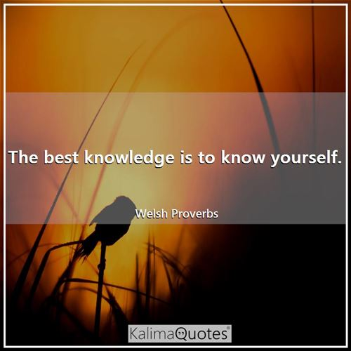 The best knowledge is to know yourself. - Welsh Proverbs