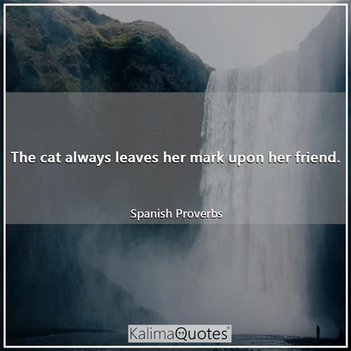 The cat always leaves her mark upon her friend. - Spanish Proverbs