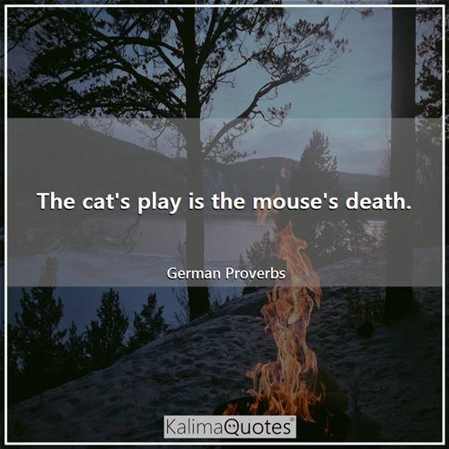 The cat's play is the mouse's death.