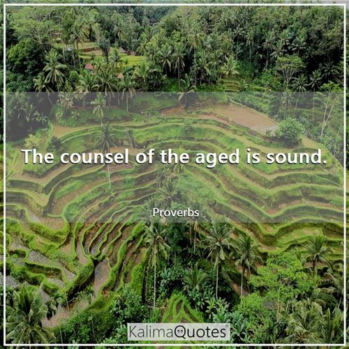 The counsel of the aged is sound.