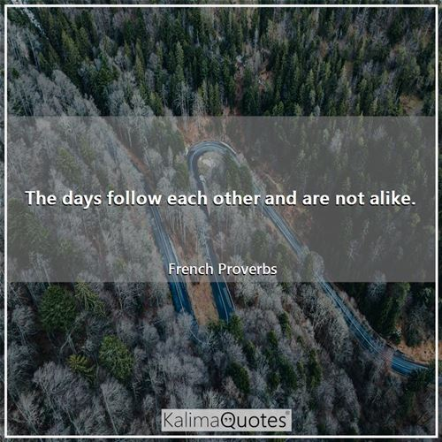 The days follow each other and are not alike. - French Proverbs