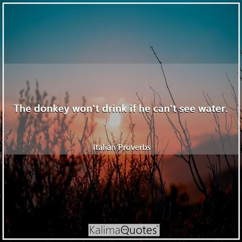 The donkey won't drink if he can't see water.