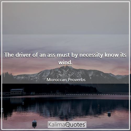 The driver of an ass must by necessity know its wind.