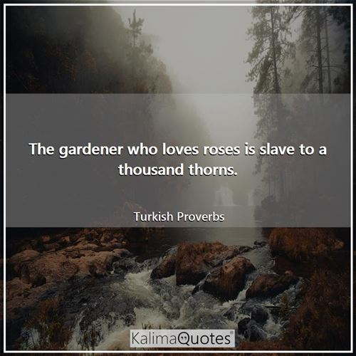The gardener who loves roses is slave to a thousand thorns.