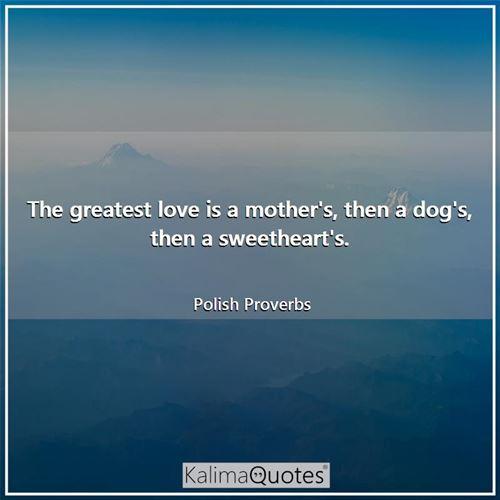 Polish Proverbs Kalimaquotes
