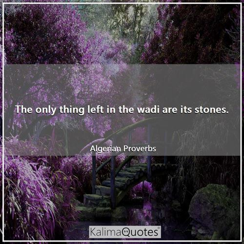 The only thing left in the wadi are its stones.