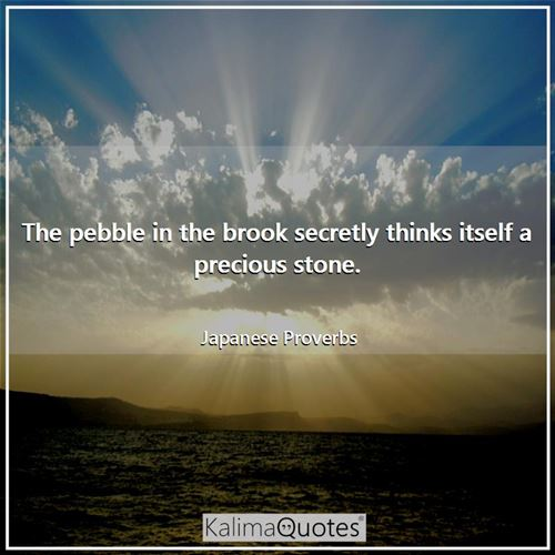 The pebble in the brook secretly thinks itself a precious stone. - Japanese Proverbs