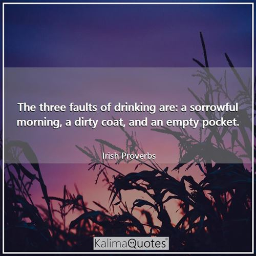 The three faults of drinking are: a sorrowful morning, a dirty coat, and an empty pocket.