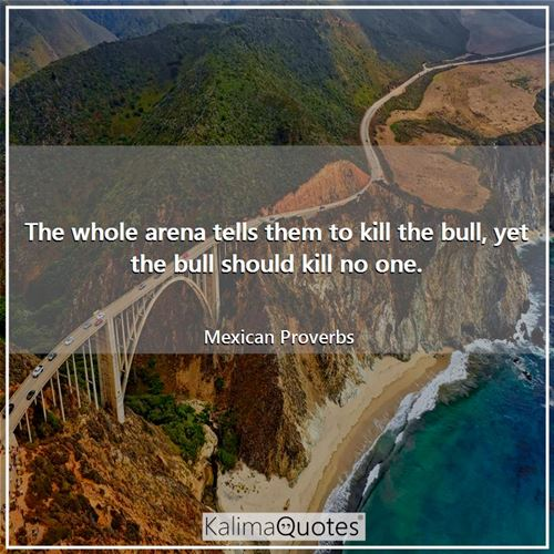 The whole arena tells them to kill the bull, yet the bull should kill no one. - Mexican Proverbs