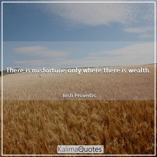 There is misfortune only where there is wealth.