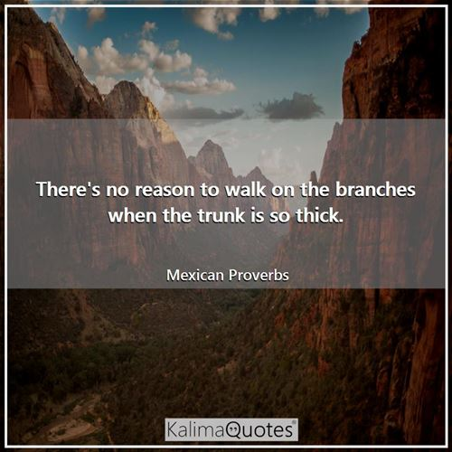 There's no reason to walk on the branches when the trunk is so thick.
