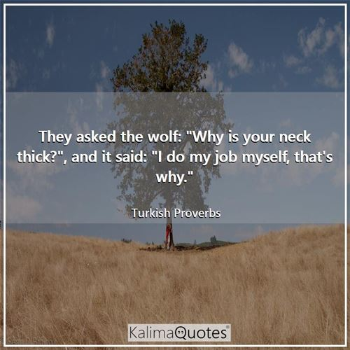 They asked the wolf: