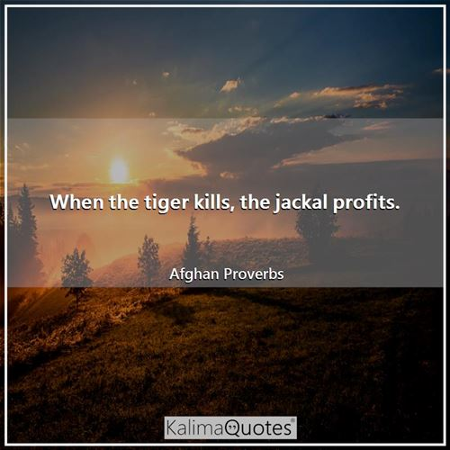 When the tiger kills, the jackal profits. - Afghan Proverbs