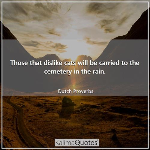 Those that dislike cats will be carried to the cemetery in the rain.