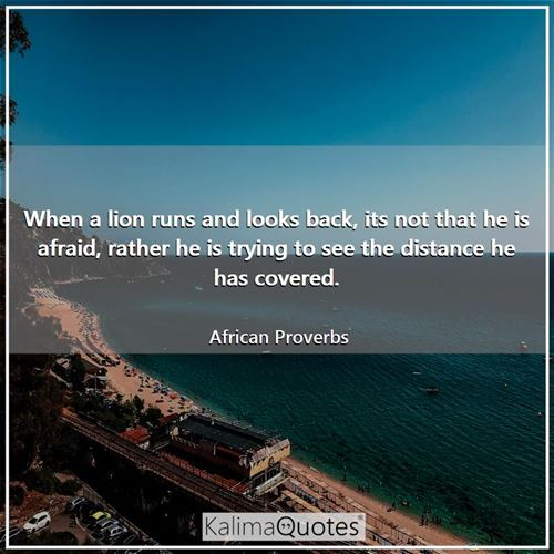 When a lion runs and looks back, its not that he is afraid, rather he is trying to see the distance  - African Proverbs