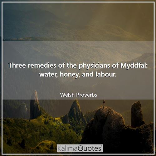 Three remedies of the physicians of Myddfal: water, honey, and labour.