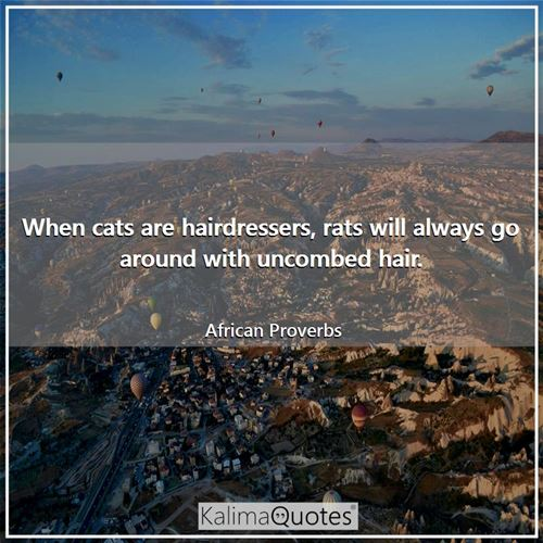 When cats are hairdressers, rats will always go around with uncombed hair. - African Proverbs