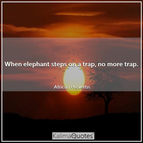 When elephant steps on a trap, no more trap. - African Proverbs