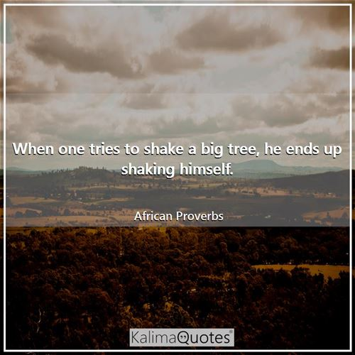 When one tries to shake a big tree, he ends up shaking himself. - African Proverbs