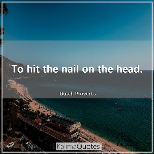 To hit the nail on the head. - Dutch Proverbs