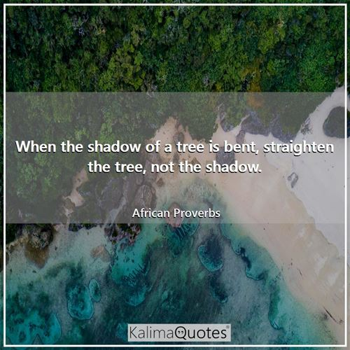 When the shadow of a tree is bent, straighten the tree, not the shadow. - African Proverbs