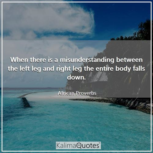 When there is a misunderstanding between the left leg and right leg the entire body falls down. - African Proverbs