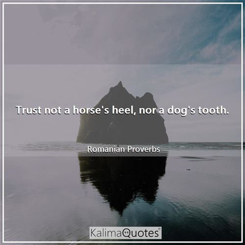 Trust not a horse's heel, nor a dog's tooth.