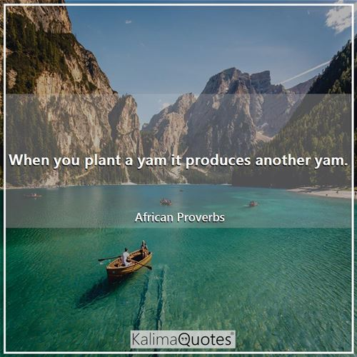 When you plant a yam it produces another yam. - African Proverbs
