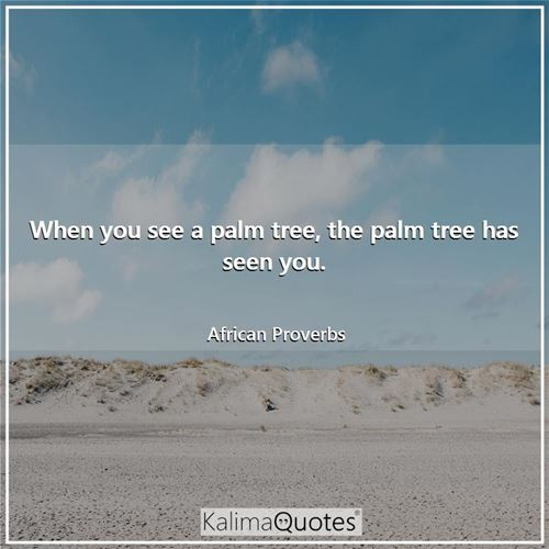 When you see a palm tree, the palm tree has seen you. - African Proverbs
