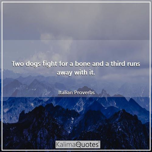 Two dogs fight for a bone and a third runs away with it. - Italian Proverbs